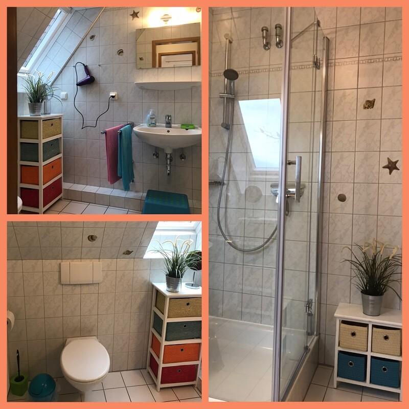Bilder von der Dusche, dem WC und dem Waschbecken im Badezimmer